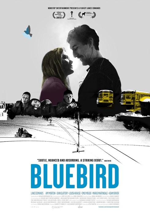 Bluebird-spb5482145