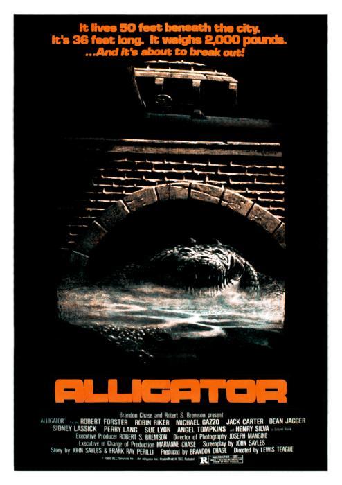 Alligator-spb4730870