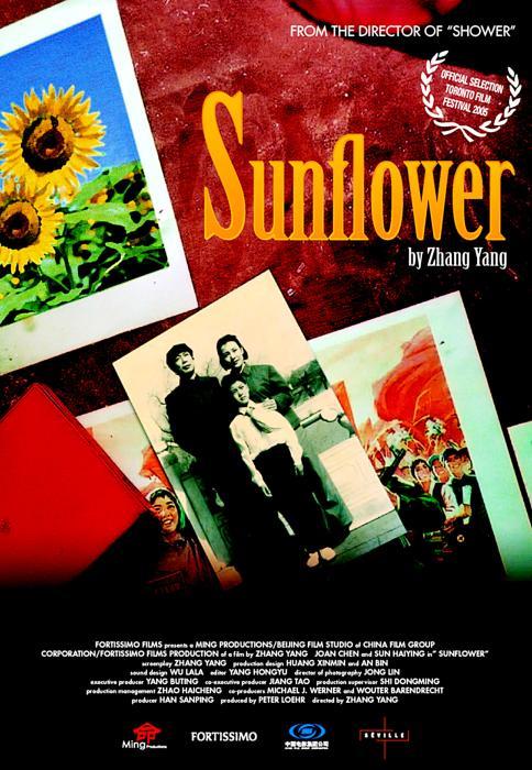 Sunflower-spb4821756