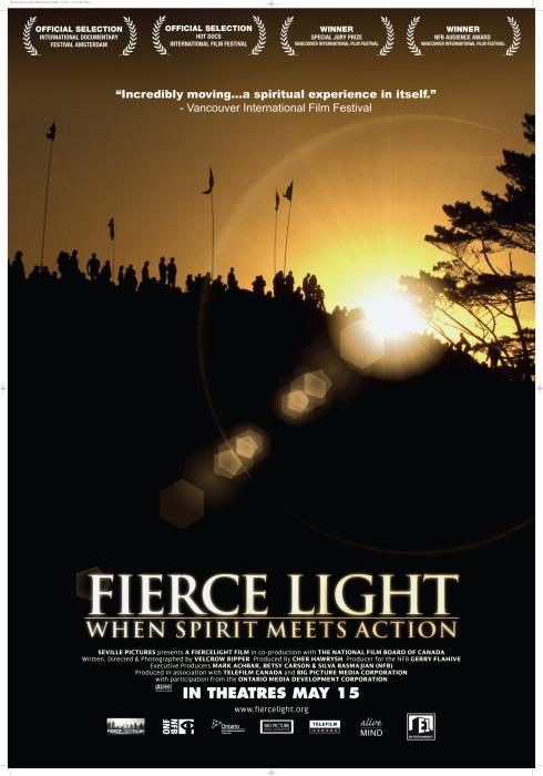 Fierce_Light:_When_Spirit_Meets_Action-spb4684384