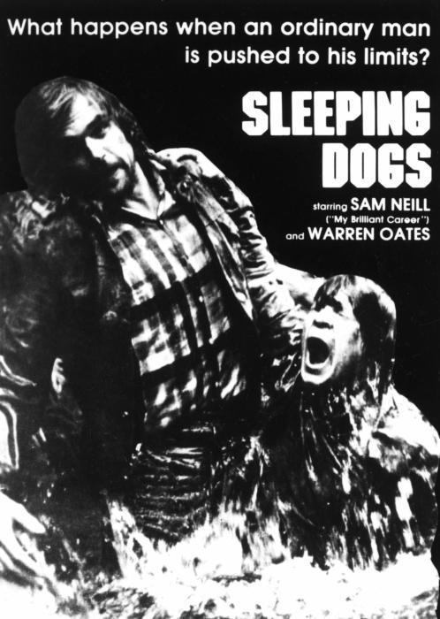 Sleeping_Dogs-spb4649825