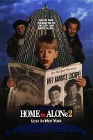 Home_Alone_2:_Lost_in_New_York