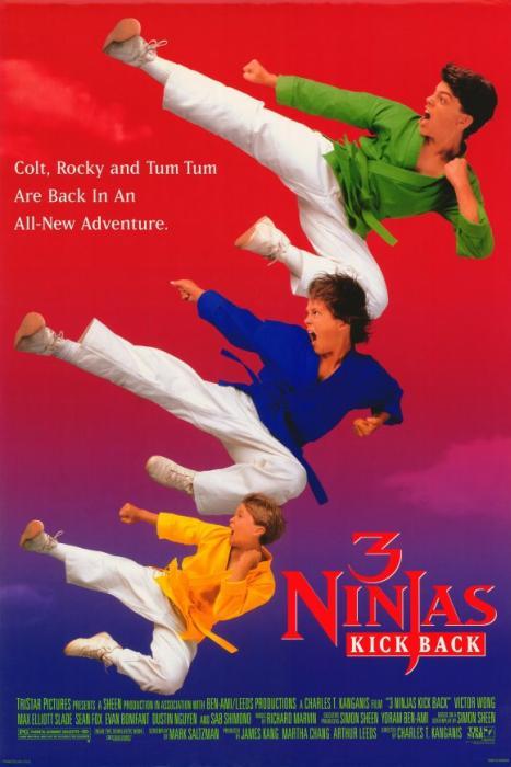 3_Ninjas_Kick_Back-spb4721895