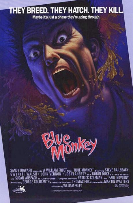 Blue_Monkey-spb4736474