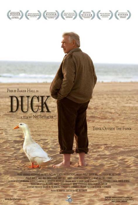 Duck-spb4714448
