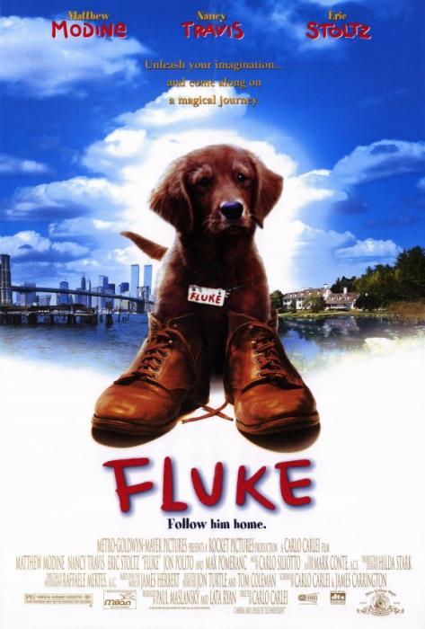 Fluke-spb4746595