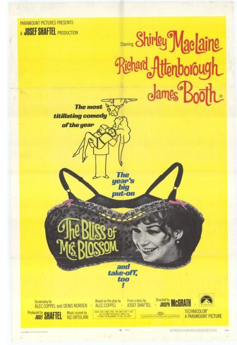 The_Bliss_of_Mrs._Blossom-spb4706235