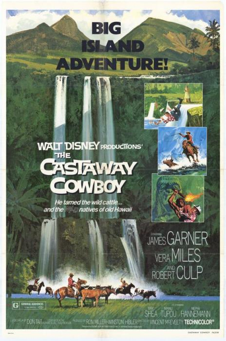 The_Castaway_Cowboy-spb4666814