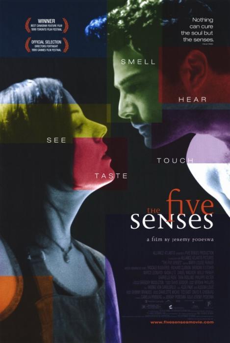 Five_Senses-spb4649664