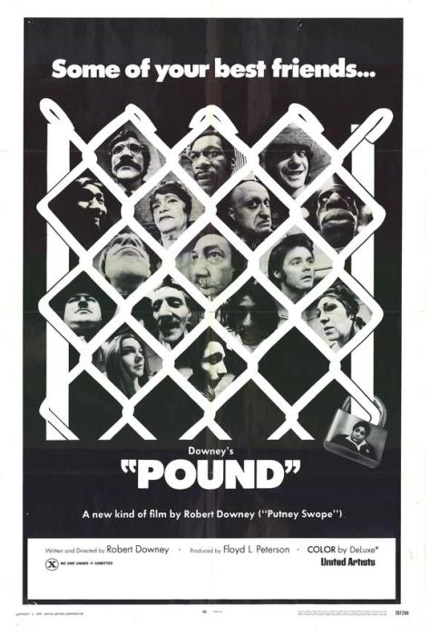 Pound-spb4679140