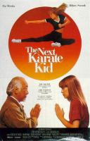 The_Next_Karate_Kid-spb4724767