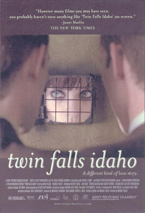 Twin_Falls,_Idaho-spb4655131
