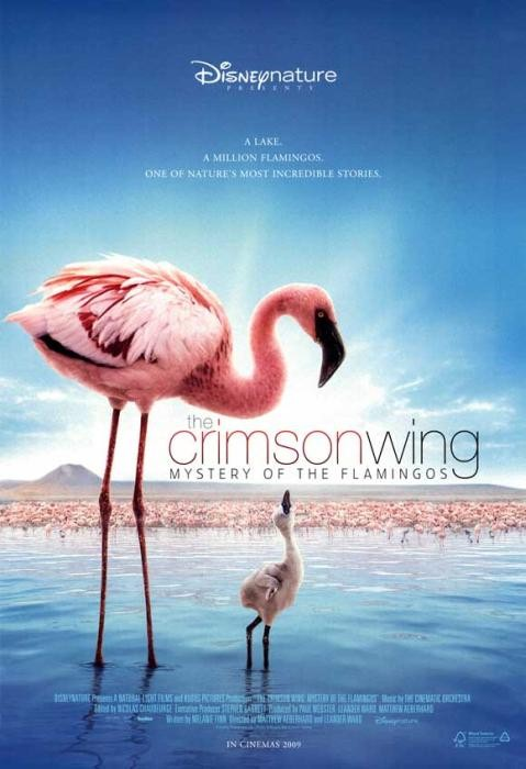 The_Crimson_Wing:_Mystery_of_the_Flamingos-spb4799699