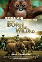 Born_To_Be_Wild_3D