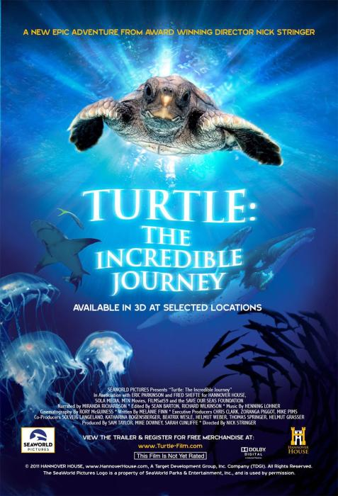 Turtle:_The_Incredible_Journey-spb4788322