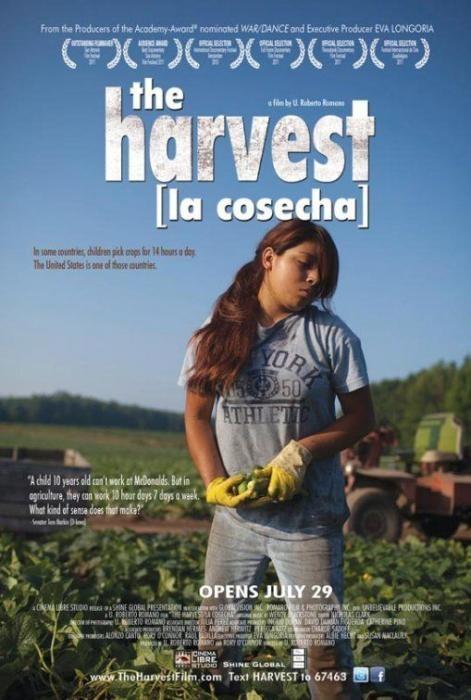 Harvest-spb4704430