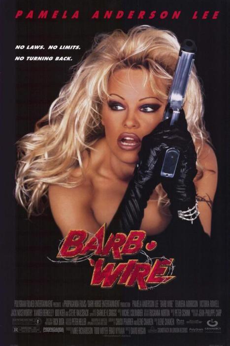 Barb_Wire-spb4800242