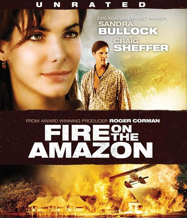 Fire_on_the_Amazon-spb4796709