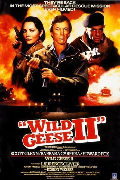 Wild_Geese_II-spb4732507