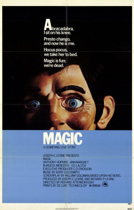 Magic-spb4788926