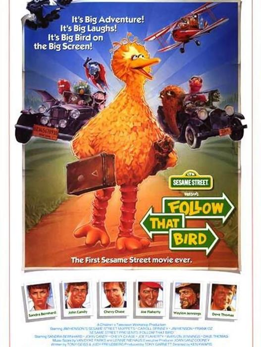Sesame_Street_Presents:_Follow_that_Bird-spb4714255