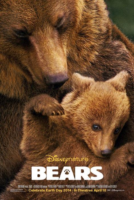 Bears-spb5542899