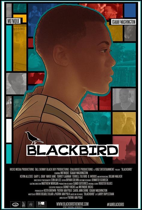 Blackbird-spb5646345
